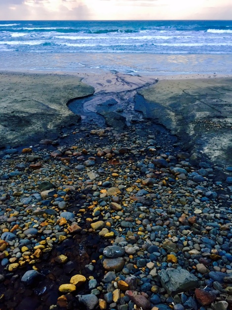 oregon-coast-travel-beachcombing