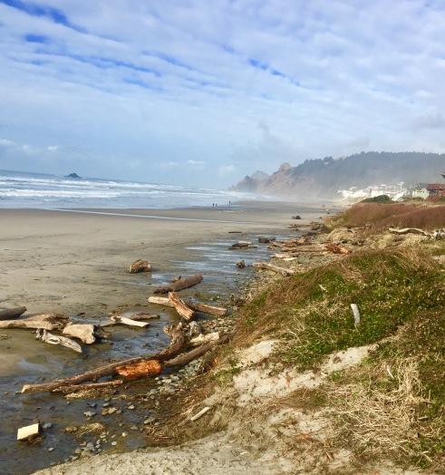 beachcombing1